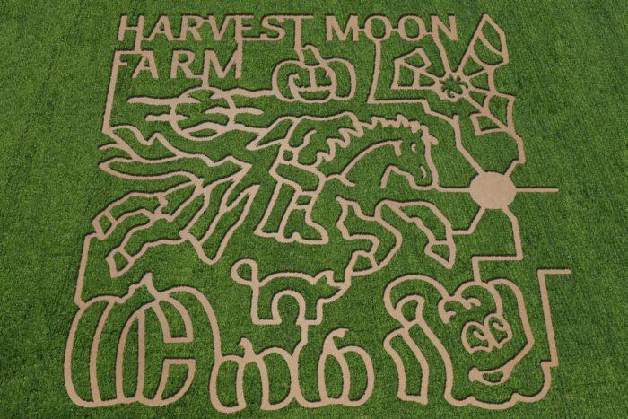 5. Harvestmoon Farm, Masaryktown