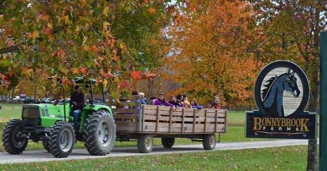 3. Bonnybrook Farms Crazed Corn Maze (Clarksville)