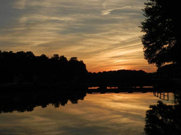 Lums Pond might be the prettiest lake in all of Delaware.