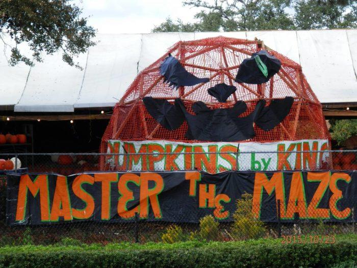 10. Pumpkins by King, Tallahassee