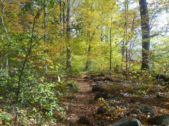 Rocky Run, Brandywine Creek State Park