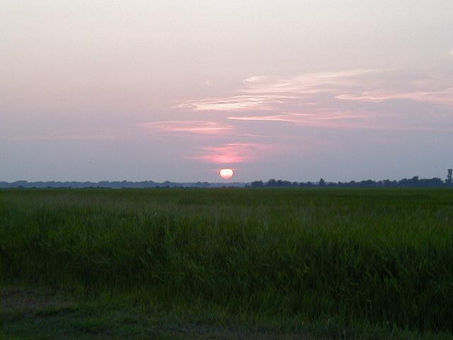 6. Arkansas Grand Prairie