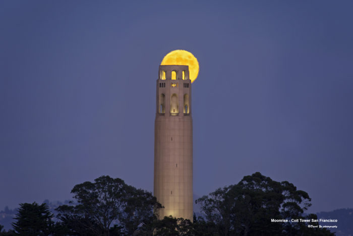 6. Visit and admire the view from Coit Tower.