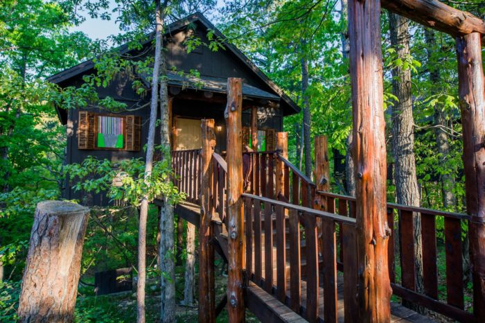 Set above the forest floor, the treehouses there are an enchanting way to stay.