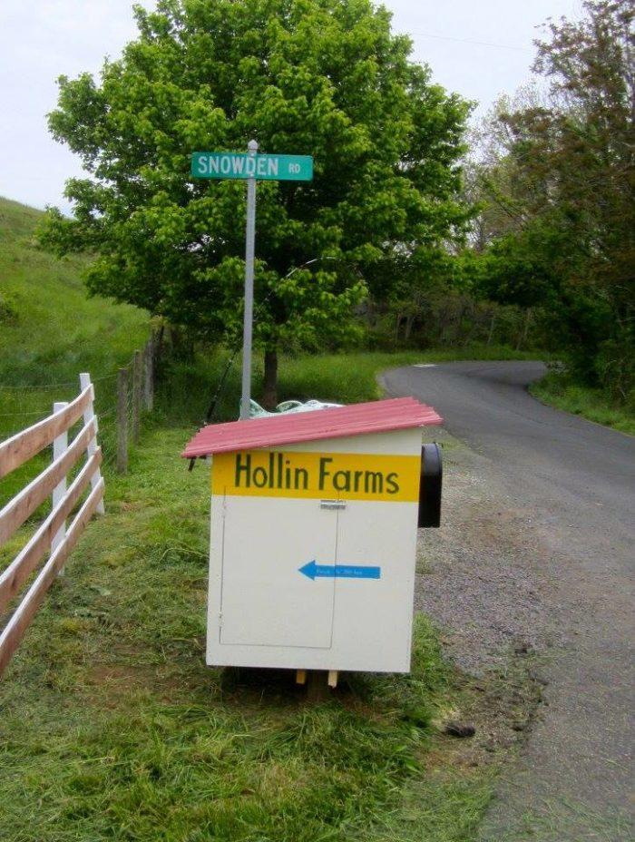 5. Hollin Farms (Delaplane)