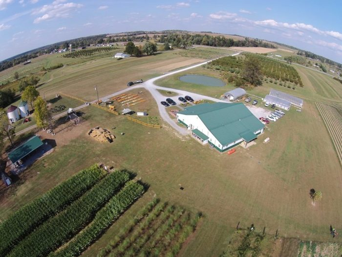 12. Hinton's Orchard and Farm Market, Hodgenville