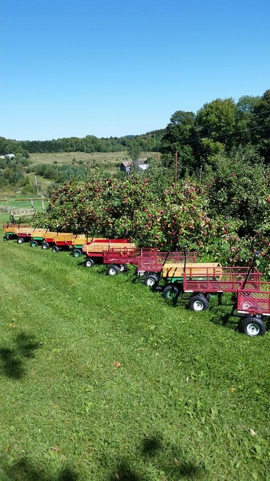 2.  Liberty Orchard, Brookfield