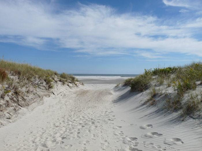 Island Beach Nj Homes For Sale