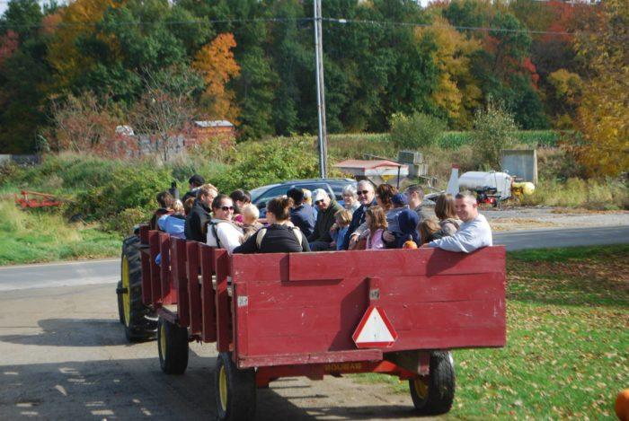 They also offer some epic fall hay rides.