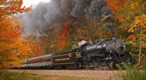 Take This Fall Foliage Train Ride Through Maryland For A One-Of-A-Kind Experience