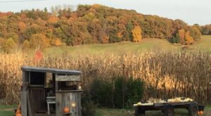 Get Lost In These 10 Awesome Corn Mazes In Ohio This Fall