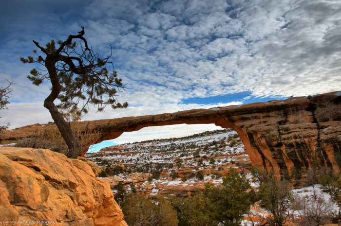 6. Natural Bridges National Monument