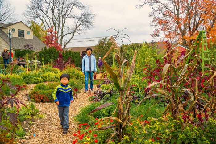 12. Tower Hill Botanic Garden Fall Fest, Boylston (Weekends between Oct. 1-10)