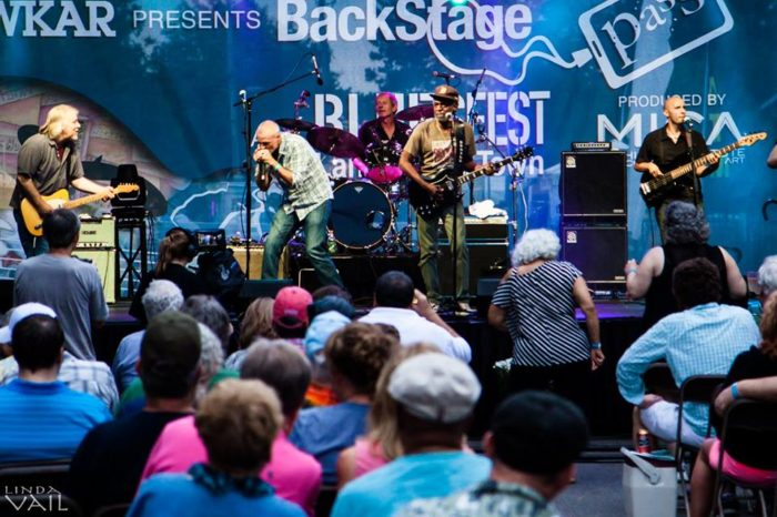 1. Michigan Blues Fest (September 16-17th, Lansing)