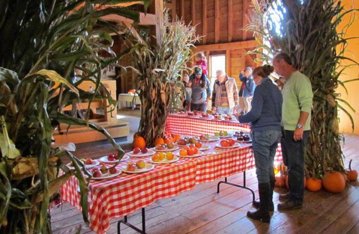 12.  Pumpkin & Apple Celebration - October 3 & 4, Woodstock