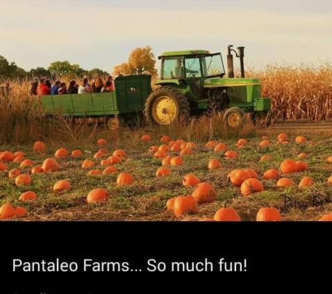 3. Pantaleo Farms (Pueblo)