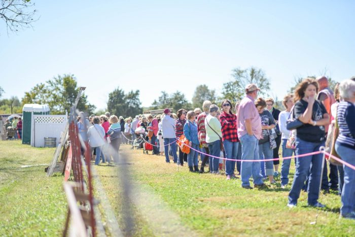 The Junk Ranch is a popular spot for the junkin' crowd, and it's definitely a market every Arkansan should visit.