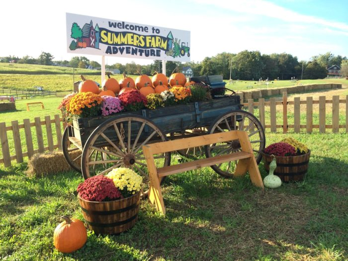 5. Maryland Pumpkin Festival, Oct 8th-9th