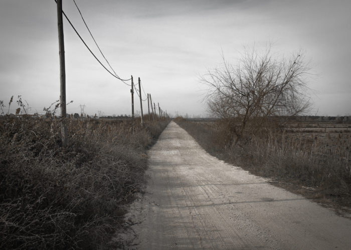 """The road has been dubbed """"Spooklight Road"""" by some of the residents who live near it."""