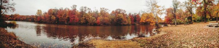 This Panorama shows why Lums Pond should be your next stop.