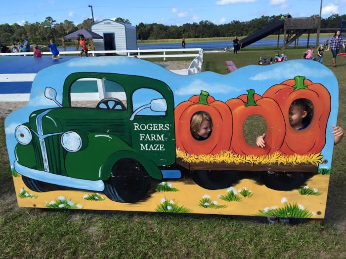 11. Roger's Farm, Gainesville