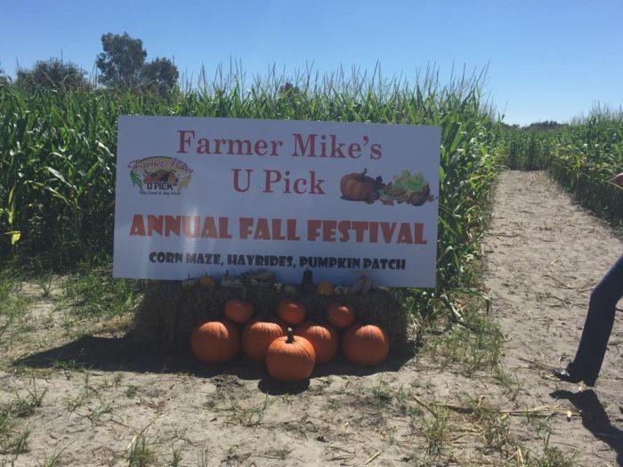 8. Farmer Mike's U Pick Fall Festival, Bonita Springs