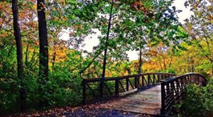 15 Easy Hikes To Add To Your Outdoor Bucket List In Delaware