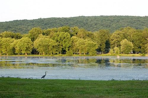 9. Iron Mountain Lake