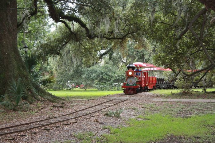 Have you ever taken the mini train ride in City Park?