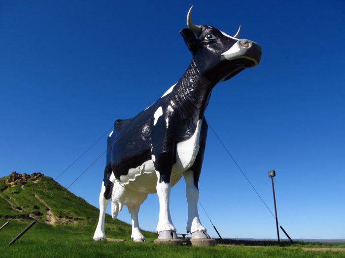 2. The humongous holstein on a hill, Salem Sue in New Salem. It's crazy when you first see her from a distance. Up close, even crazier.