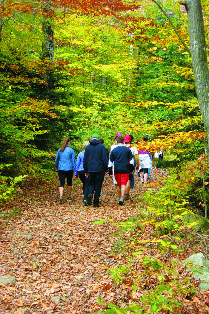 If you start from the official trailhead, the hike to the ledge is about 1.9 miles through gorgeous forest and peaceful groves.