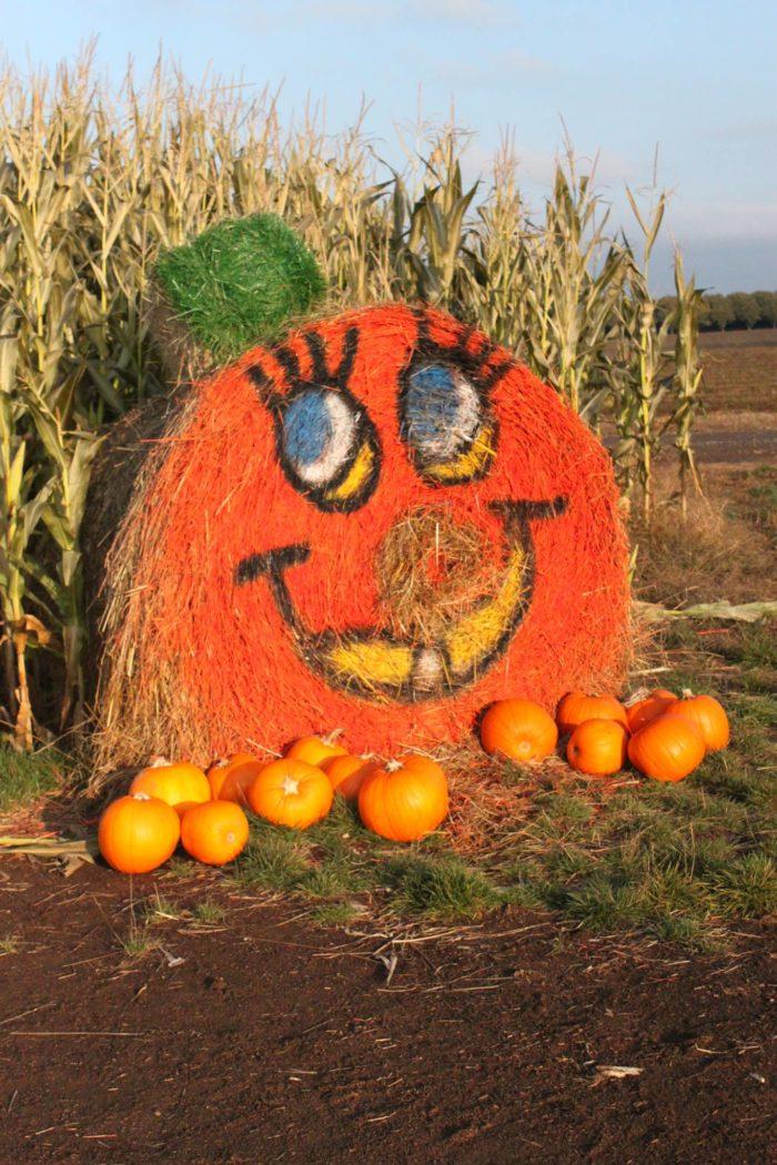 3. Wooden Shoe Pumpkin Festival