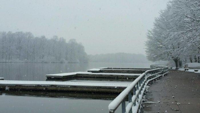 And if you find yourself walking along the docks in the middle of winter, you might feel an extra chill.