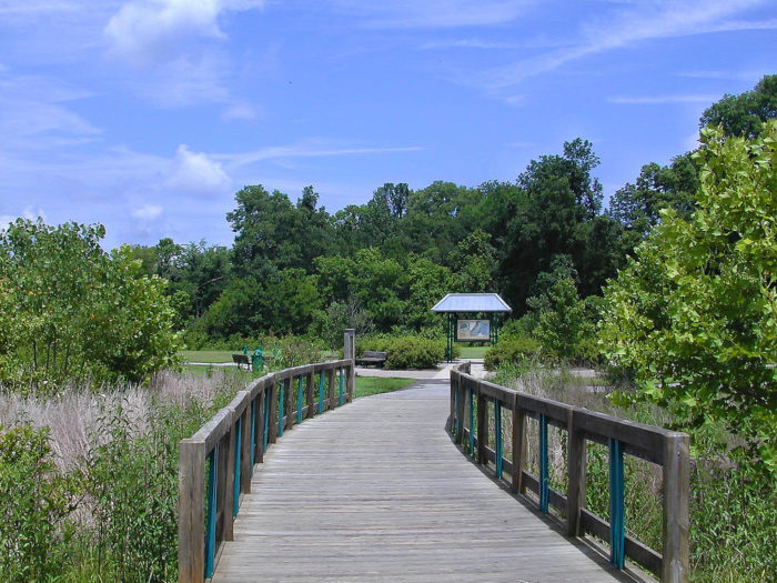 5. Shelby Park & Greenway