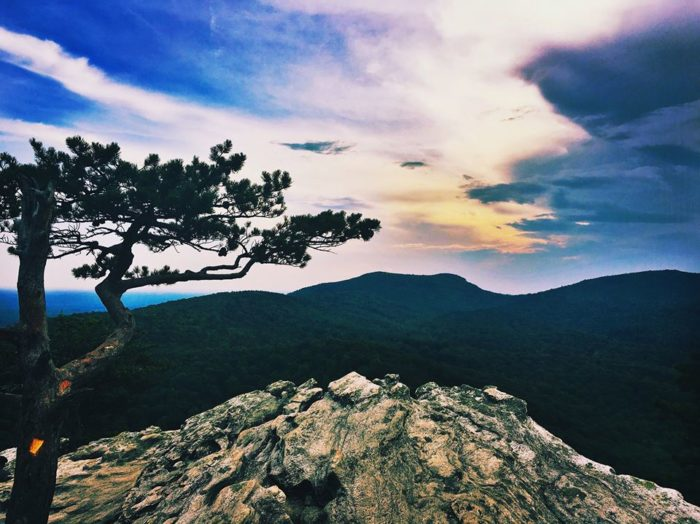 4. Moore's Wall Loop Trail, Hanging Rock State Park
