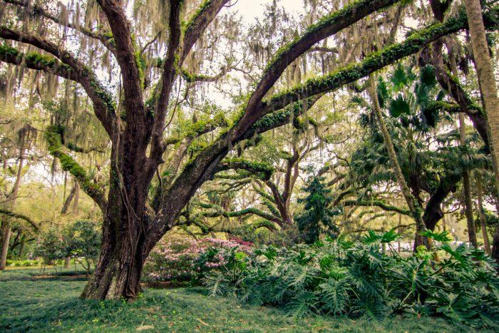 8. Washington Oaks Gardens State Park, Palm Coast