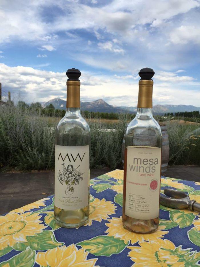 1. Mesa Winds Farm & Winery (Hotchkiss)