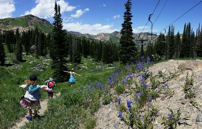 3. Some of the Beehive State's best hiking is found at our ski resorts.