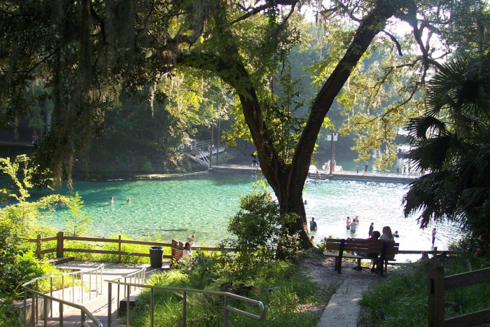 If you want to enjoy some outdoor activities, beautiful Fanning Springs State Park is only 15 minutes away. Here, visitors can enjoy a day of swimming, fishing, canoeing and kayaking, and hiking, making this a well-rounded trip
