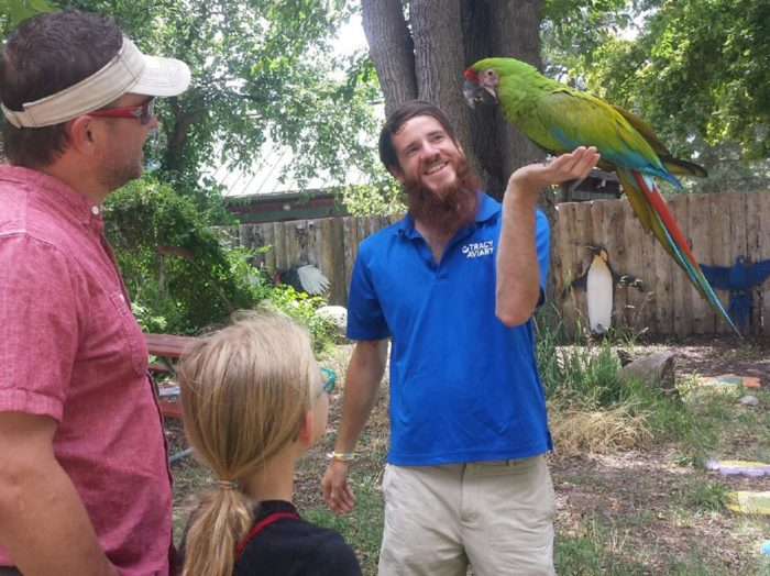 Get up close and personal with DaVinci, a great green mackaw (and his aviary handler).
