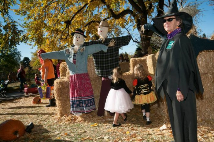 10. 32nd Annual Boo At The Zoo & Boo After Dark, Oct. 22, 23, 29 & 30