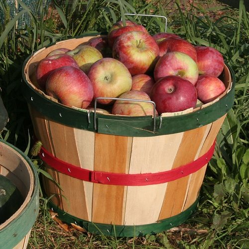 4. Crooked Run Orchard (Purcellville)