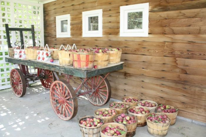 3. Ross Orchards, Fromberg