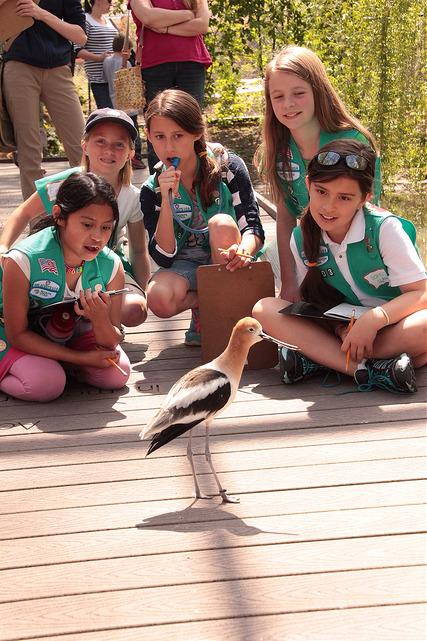 And Girl Scouts can get their Junior Animal Habitats Badge, too.