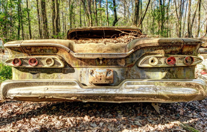 Are you ready to explore this automobile graveyard?