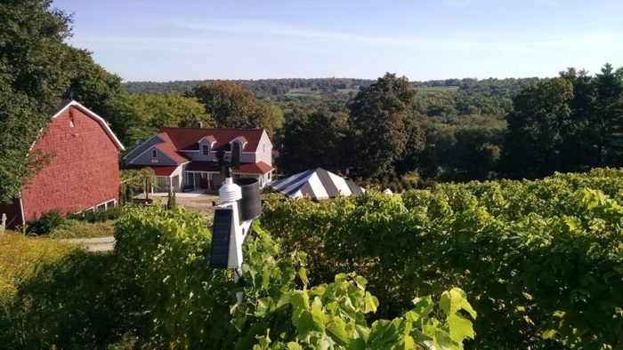10. Jones Family Farms (Shelton)