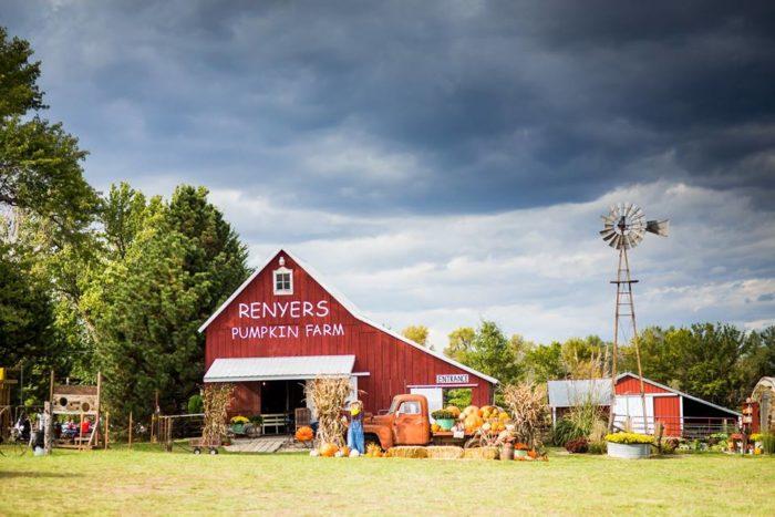 10. Renyer's Pumpkin Farm (Wetmore)