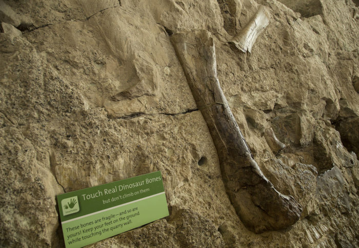 When you visit this national treasure, be sure to take the (rare) opportunity to touch real dinosaur bones...