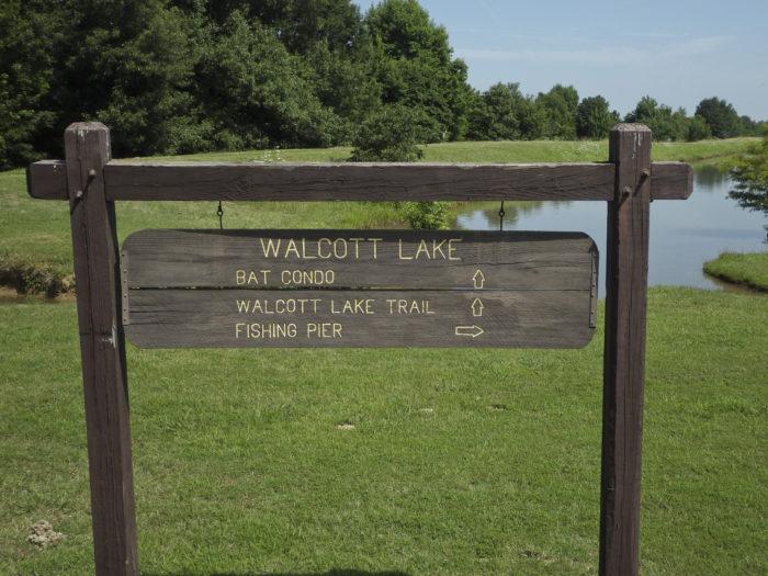 1. Walcott Lake Trail (Crowley's Ridge State Park)