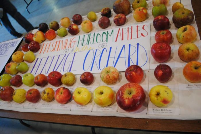 11. Great Maine Apple Day, Unity - Oct 16, 2016